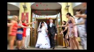 Свадьба Светланы и Сергея