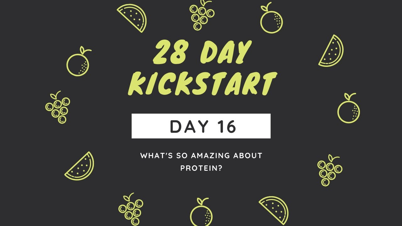 Day 16 - What's So Special About Protein?