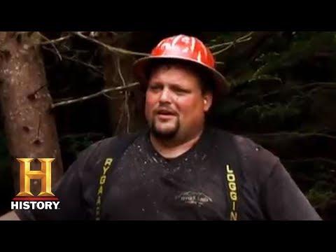 Ax Men: Tree-falling Close Call | History