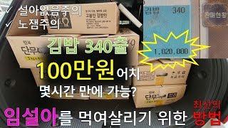 김밥 100만원어치 말았습니다