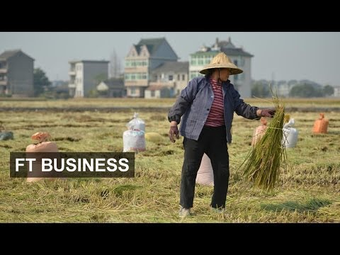 Chinese farmers cash in on ecommerce | FT Business
