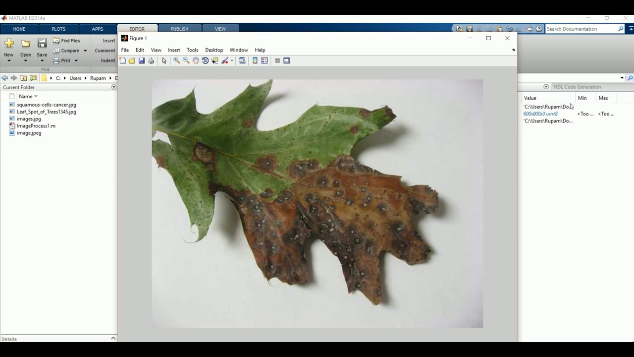 Image Segmentation And Preprocessing With Matlab
