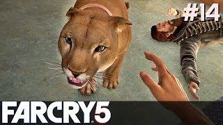 FAR CRY 5 Gameplay PL [#14] KICI KICI /z Skie