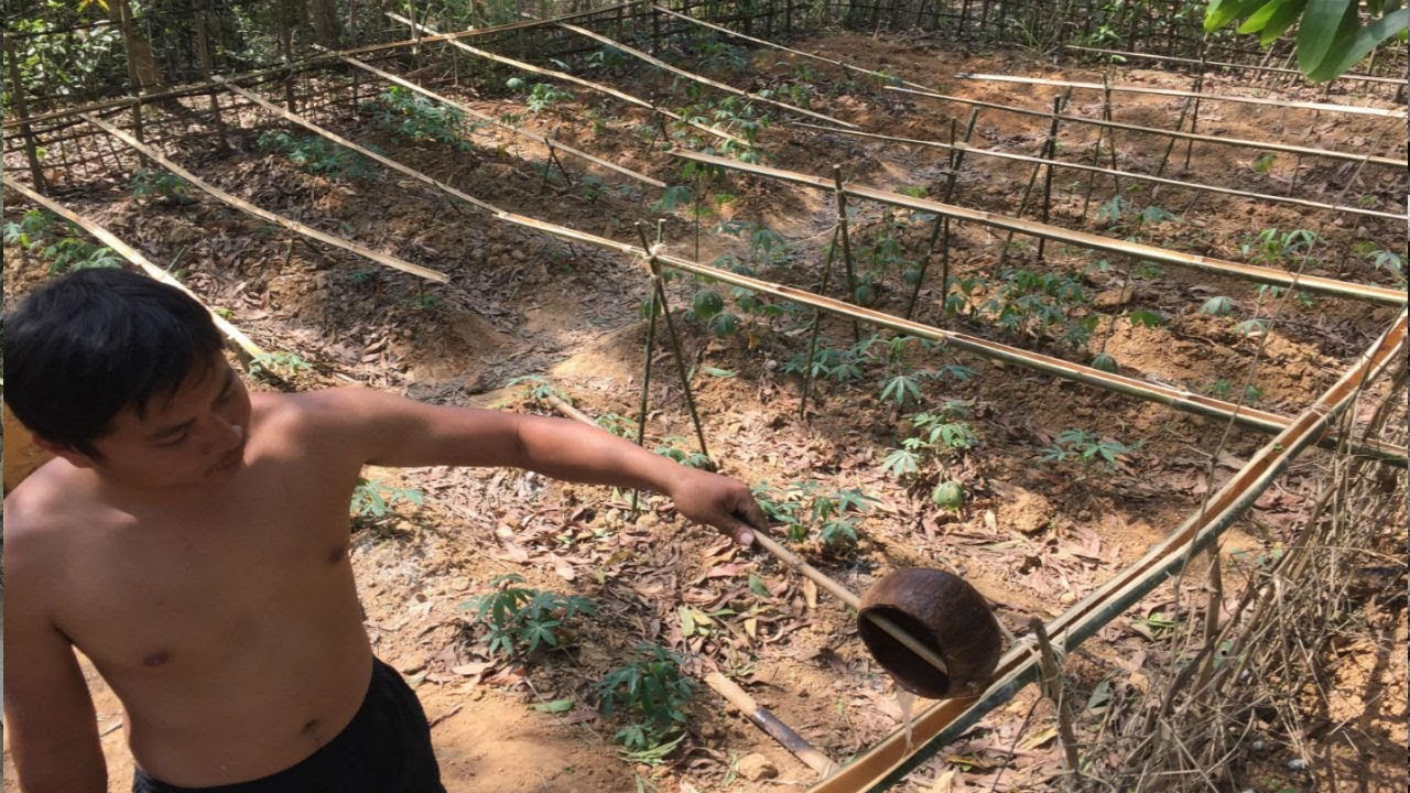 Primitive Technology:Watering system!Primitive life-wilderness