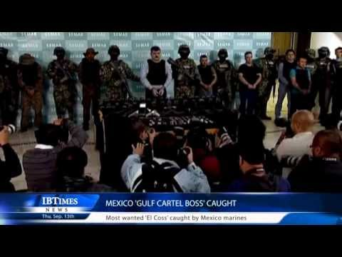 Mexico 'Gulf cartel boss' caught