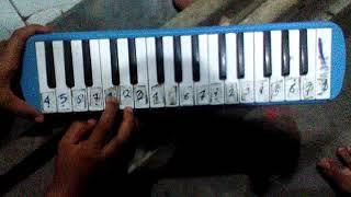 Not pianika happy birthday