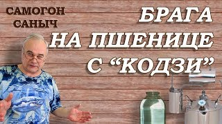 БРАГА НА ПШЕНИЦЕ, дрожжи Кодзи и... ШОК! / Рецепты  самогона, браги / Самогон Саныч