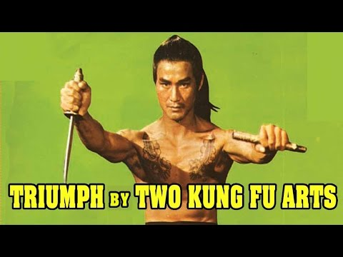Wu Tang Collection - Triumph by Two Kung Fu Arts- ENGLISH Subtitled
