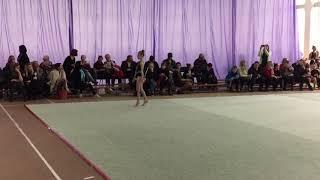 Художественная гимнастика булавы 13/04/2019
