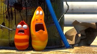 LARVA - SCARED OF THE SUN | Cartoons For Children | LARVA Official