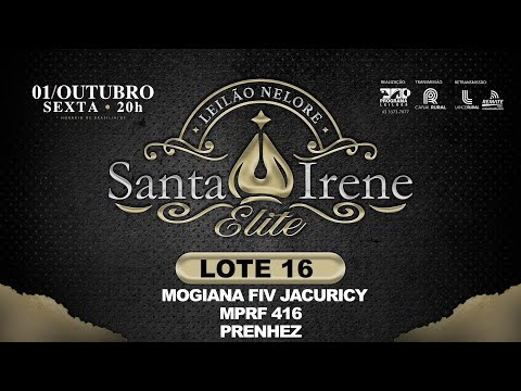 LOTE 16 MOGIANA FIV JACURICY   MPRF 416