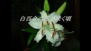 新垣勉 - 白百合の花が咲く頃