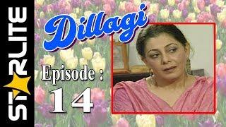 Dillagi, Episode 14, Top Pakistani Drama,URDU Comedy, Drama Serial Kashif Mehmood, Naseem Vicky