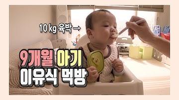 9개월아기 이유식 | 이유식 잘 먹이는 법 |이유식 먹이는 노하우| 이유식 잘 안 먹는 아기 | 이유식 잘 먹는아기 | 아기먹방 | 이유식 아기 먹방 | babies mukbang
