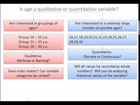 Types Of Variables - Qualitative & Quantitative - YouTube