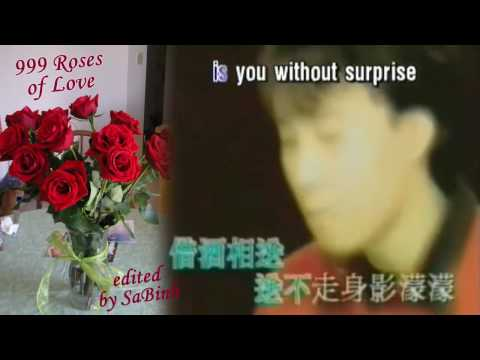999 Roses Of Love [ English & Chinese Karaoke 黄晓明《新上海滩》 朵玫瑰   ]