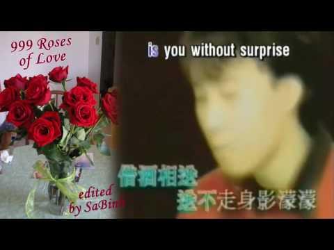 999 Roses Of Love [ English & Chinese Karaoke 黄晓明《新上海滩》 朵玫瑰   ]