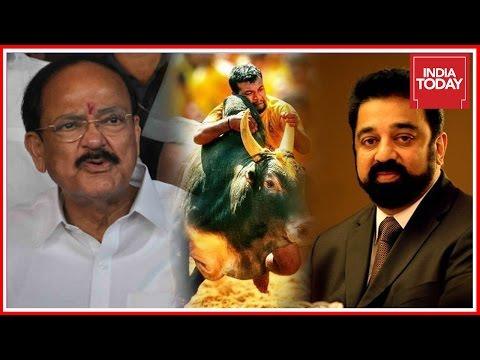 After Kamal Haasan, Union Minister Venkaiah Naidu Backs Jallikattu