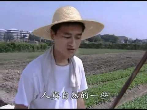 廬江湯池「和豐園」農業實驗:蟲仔的「特色餐廳」