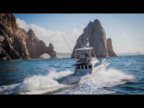 Couple Talks About Their Fishing Tour | Cabo Fishing Charter | Blue Sky Cabo