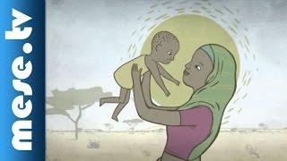 Egy gyermek életének első 1000 napja - UNICEF