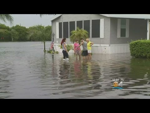 Parts Of Davie Under Water As Stormy Weather Continues