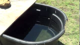 Shading Horse Water To Prevent Heat and Algae - Horse Water Ideas