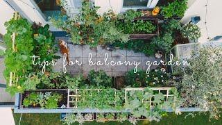 #28 Essential Tips for Starting a Balcony Vegetable Garden  Urban Gardening