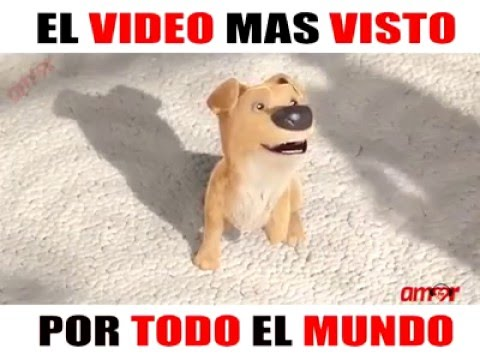 download LECCION DE VIDA EL VIDEO MAS VISTO TE HARA LLORAR