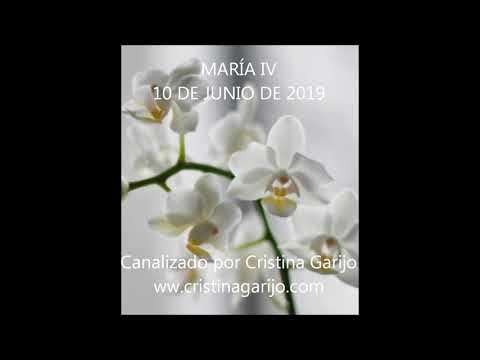 CANALIZACIÓN MARÍA IV