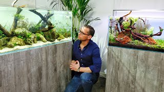 Scaped Nature - Stunning Display Aquascapes (with problems!)