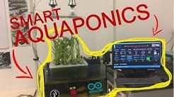 Smart Aquaponics System