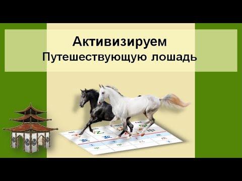 Активизируем Путешествующую Лошадь