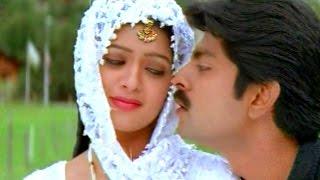 Video Vanamaali Vanamalli Full Video Song || Srimathi Vellostha Movie || Jagpati Babu, Poonam download MP3, 3GP, MP4, WEBM, AVI, FLV Agustus 2017
