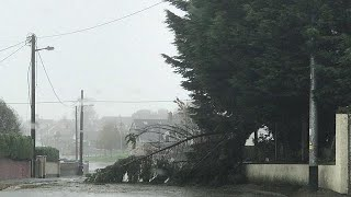 La tempesta Ophelia travolge l'Irlanda, ci sono delle vittime