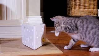 "PetSafe Brand ""Frolicat Cheese"" интерактивная игрушка для кошек"