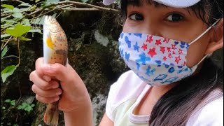 Amago Fish In Japan, Catch By Hands||Cherry Salmon