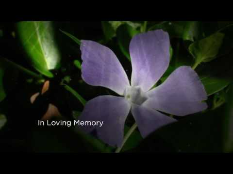 In remembrance of Betty Wilson