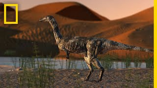 Dinosaur Foot is Best-Preserved Theropod Fossil in Brazil | National Geographic