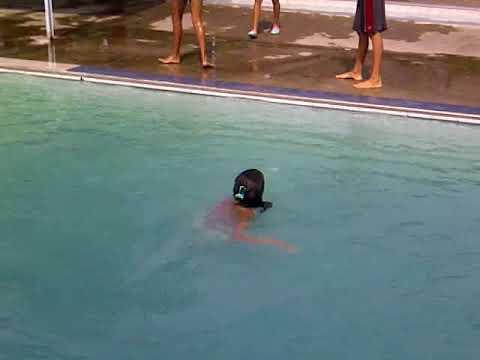 Anny Smile Vazquez Villarreal en sus 15 años la tiran a la piscina