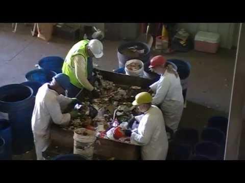 Solid Waste Sort At Pope Douglas Solid Waste Management