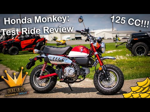 2019 Honda Monkey Test Ride Review [Scooter or Motorcycle?!]