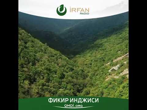 Смотреть Фикир инджиси - Ватан . Раим Гафаров онлайн