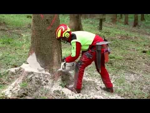 Forstwirtausbildung in Albstadt
