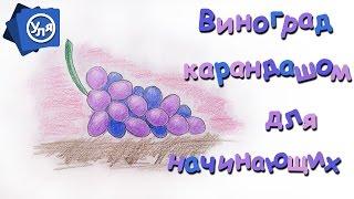 Как нарисовать виноград(Как нарисовать виноград https://youtu.be/YFGwDhRc3EM Продолжаем рисовать фрукты карандашом для начинающих. В этот раз..., 2016-10-28T15:00:04.000Z)