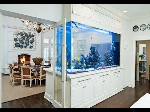 АКВАРИУМ в квартире. Как красиво вписать аквариум в интерьер