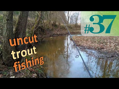 Nothing To See Here, Move Along | Uncut Fishing #37