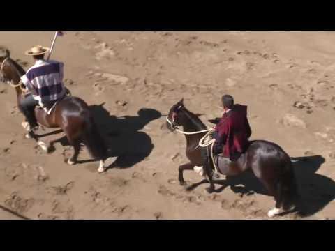 Rodeo Maria Pinto - Diciembre 11/2016