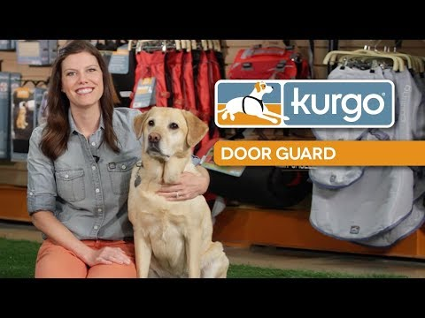 Kurgo Impact Dog Car Harness Doovi