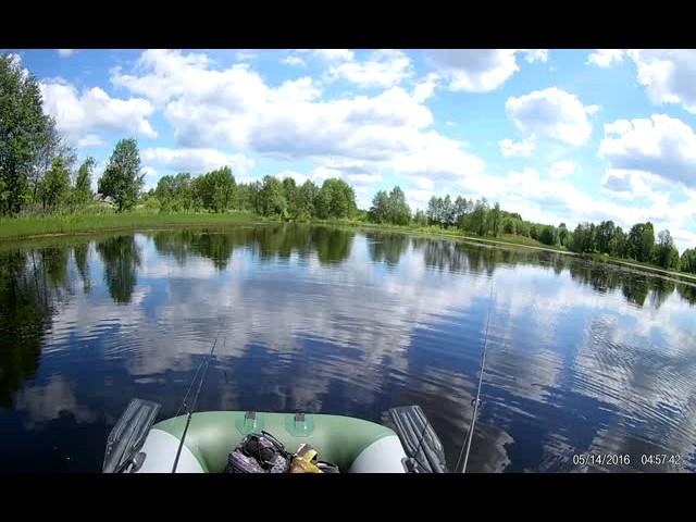 Заболоченное озеро 1